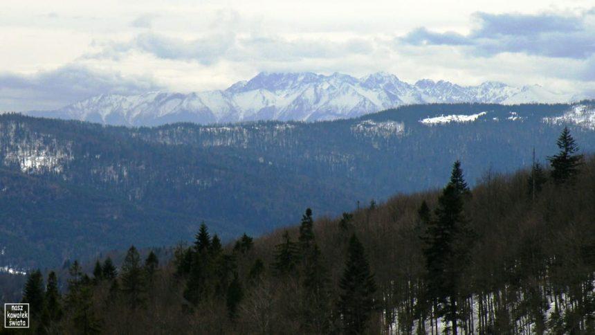 Panorama Tatr z Kutrzycy