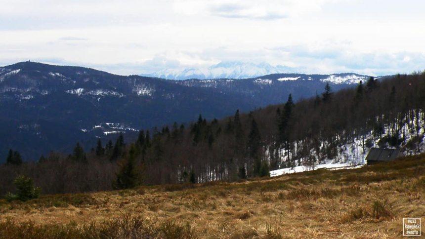 Panorama Tatr z Polany Skalne