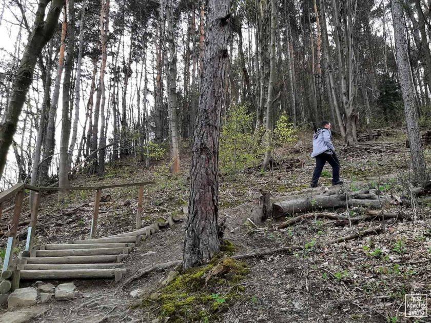 Park Węgielnik-schodki