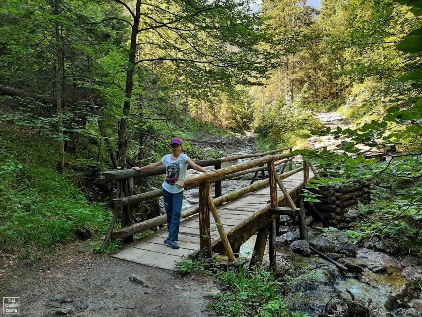 Mostek w Dolinie Białego