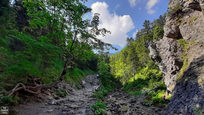 W drodze na Sarnią Skałę z Doliny Białego