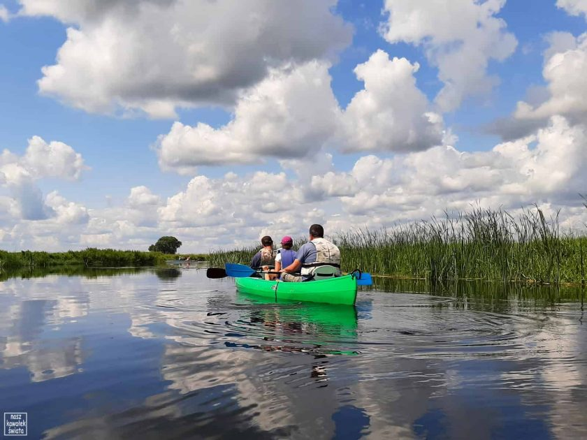 Canoe na Biebrzy